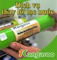 Dịch vụ thay lõi lọc nước Kangaroo chính hãng tại nhà