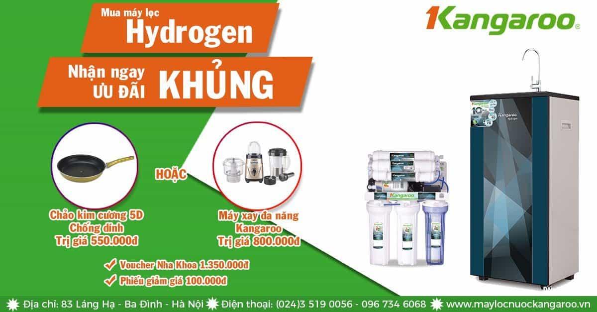 Mua máy lọc nước Hydrogen tặng Chảo và máy xay