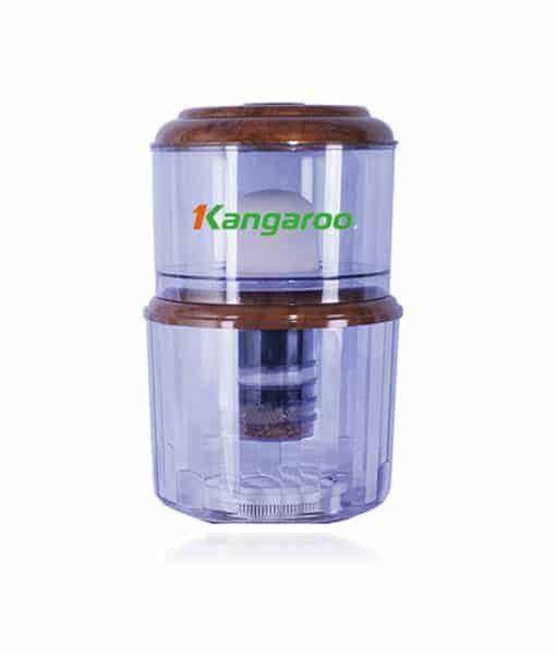 Binh Up Kangaroo.jpg