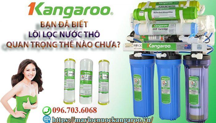 Ban Da Biet Loi Loc Nuoc Tho Quan Trong The Nao Chua Min