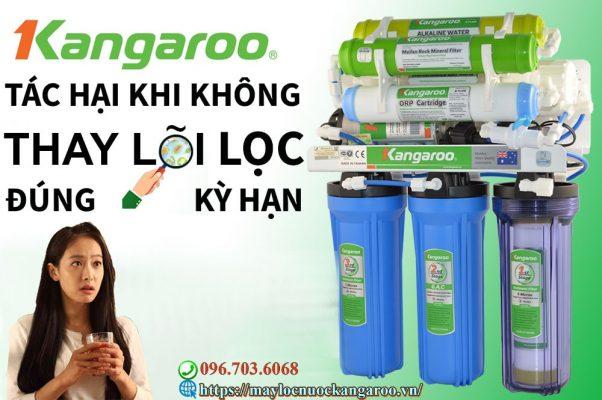 Nhung Tac Hai Khi Khong Thay Loi Loc Nuoc Dung Ky Han Min