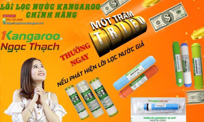 Loi Loc Nuoc Kangaroo Chinh Hang Min