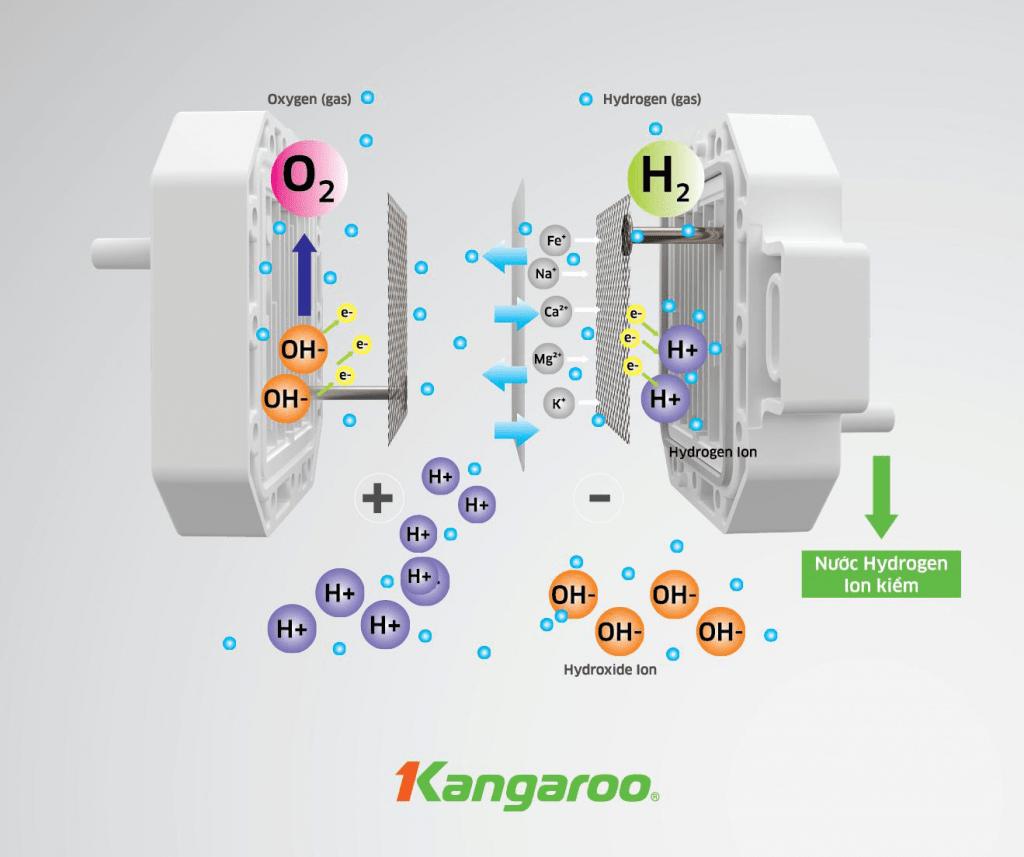 Máy lọc nước Kangaroo Hydrogen ion kiềm KG-Y1MED