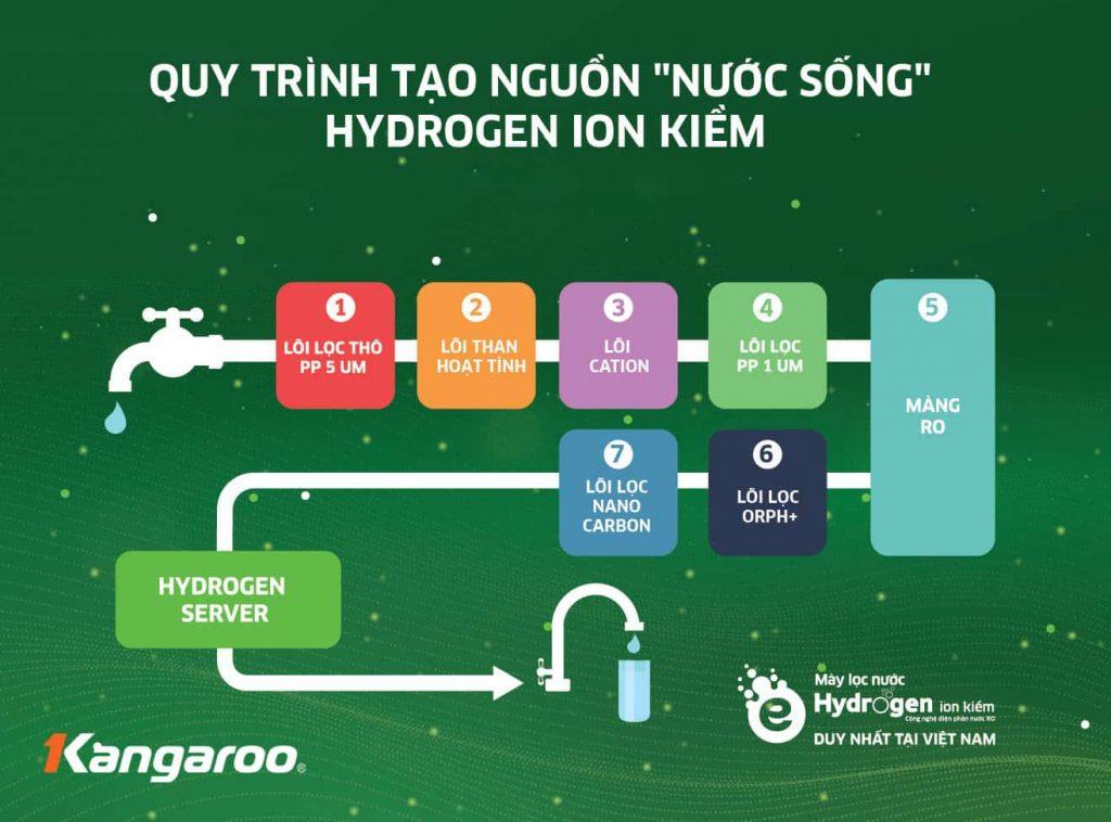 Kangaroo May Loc Nuoc Phai La Hydrogen 7 1024x758