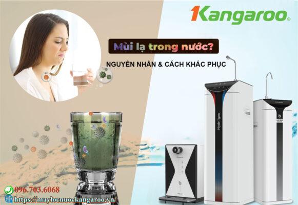 Nguyen Nhan Nuoc Tinh Khiet Co Mui La