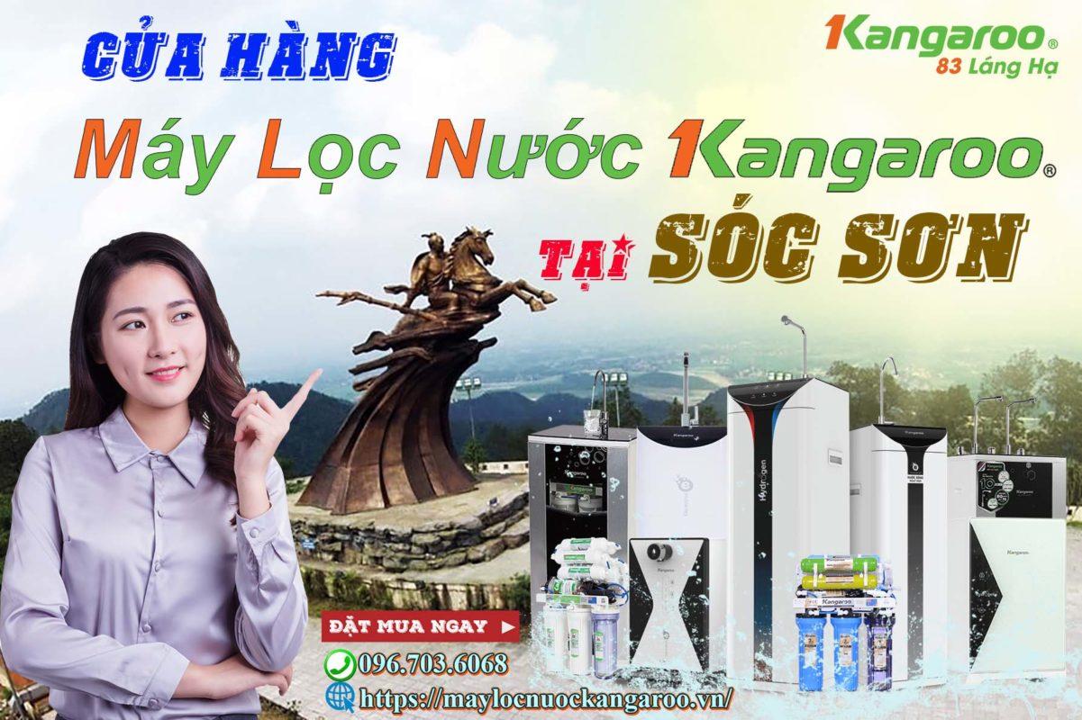 May Loc Nuoc Kangaroo Tai Soc Son Chinh Hang 100